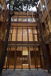 20110307085853-ivanvargas-patio-con-magno.jpg